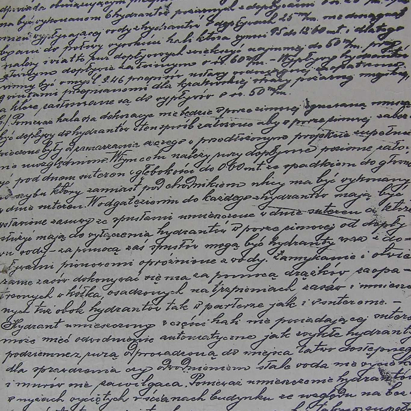 Dokument wydany przez Magistrat stołeczno królewskiego miasta Krakowa z 14 listopada 1903 roku